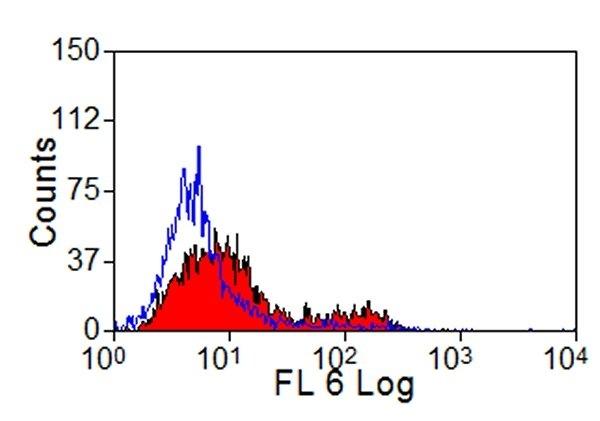 Testing Data #1 CD205.