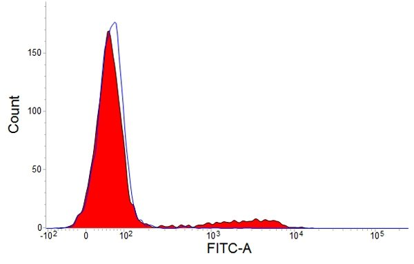 Flow Cytometry (FC/FACS) CD8.