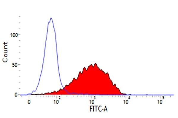 Flow Cytometry (FC/FACS) CD44.