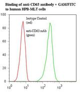Flow Cytometry (FC/FACS) CD63.