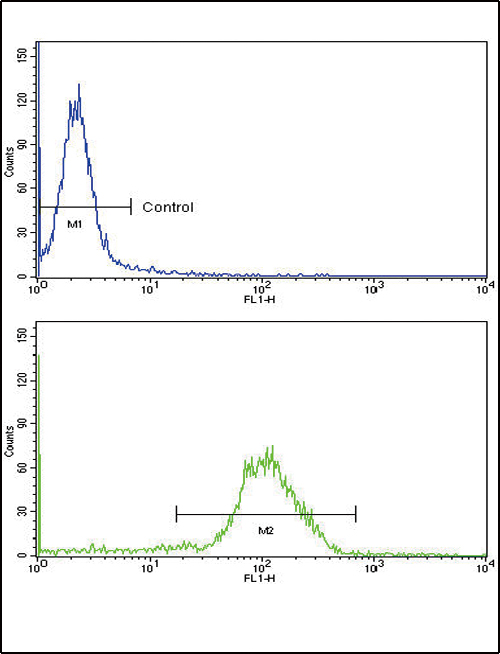 Flow Cytometry (FC/FACS) NPPA / ANP.