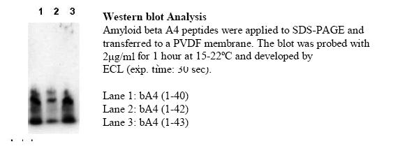 Testing Data Amyloid, beta, N-terminal/APP.