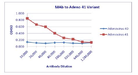 anti-Adenovirus antibody | Adenovirus Monoclonal Antibody (Clone 4F2)