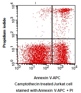 Annexin V-APC / PI Apoptosis Detection Kit detection kit Testing Data image