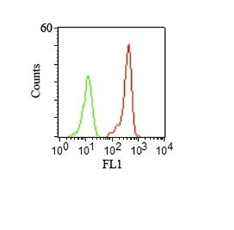 Flow Cytometry (FC/FACS CD46.