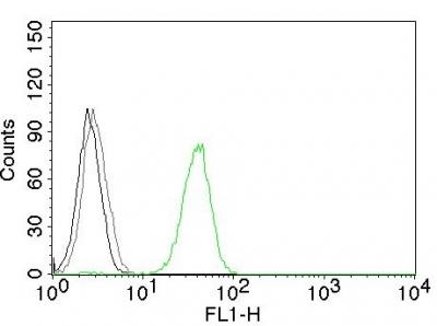 Flow Cytometry (FC/FACS PECAM1.
