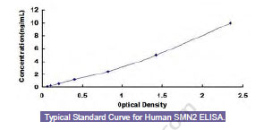 Typical Testing Data/Standard Curve (for reference only) SMN2.