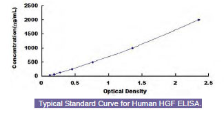 Typical Testing Data/Standard Curve (for reference only) HGF.