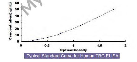 Tbg Elisa Kit Human Thyroxine Binding Globulin Tbg Elisa Kit