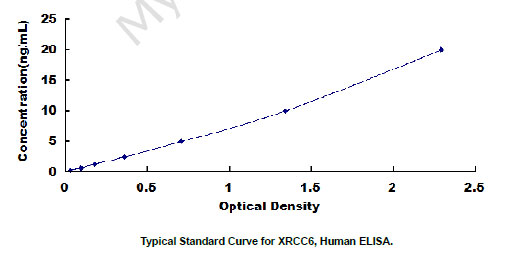 Typical Testing Data/Standard Curve XRCC6.