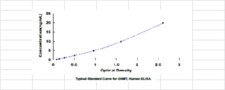 Typical Standard Curve/Testing Data GNMT.