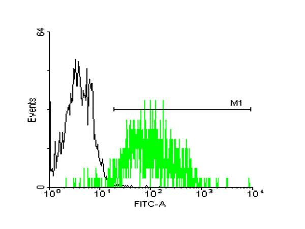 Flow Cytometry (FC/FACS) STI1/STIP1.