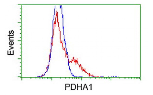 Flow Cytometry (FC/FACS) PDHA1.
