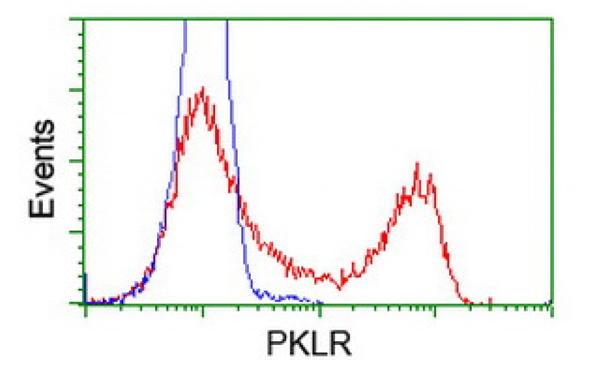 Flow Cytometry (FC/FACS) PKLR.