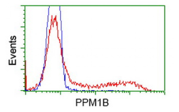 Flow Cytometry (FC/FACS) PPM1B.