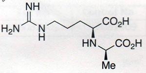 Test Data D-(+)-Octopine.