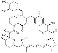 Molecular Structure Rapamycin.