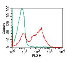 Flow Cytometry (FC/FACS) #2