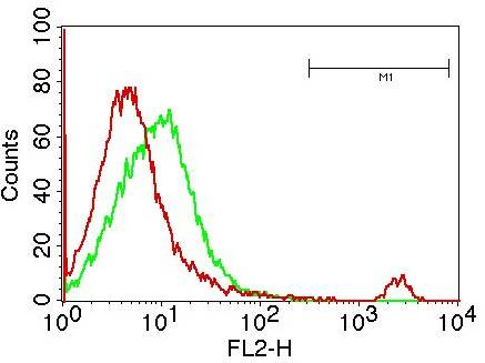 Flow Cytometry (FC/FACS) CD19.