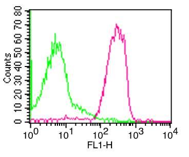 Flow Cytometry (FC/FACS) CD50.