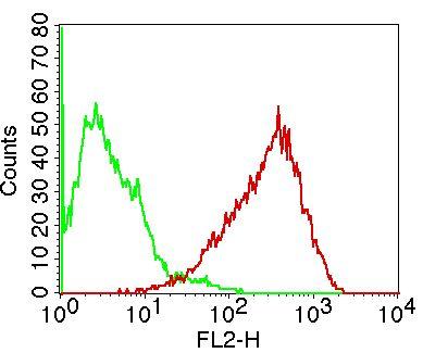 anti-hB7-2 antibody | Mouse anti-Human hB7-2/CD86 Monoclonal