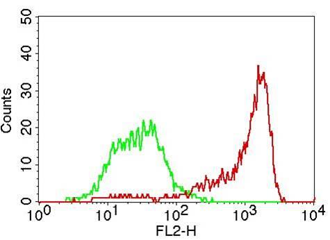 Flow Cytometry (FC/FACS) CD31.