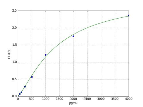 Typical Standard Curve Lptn/XCL1.