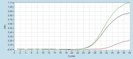 Amplication #2 hsa-mir-29a Real-Time RT-PCR.
