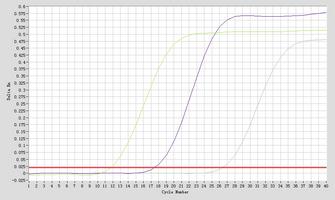 Amplication hsa-mir-1271-5p Real-Time RT-PCR.