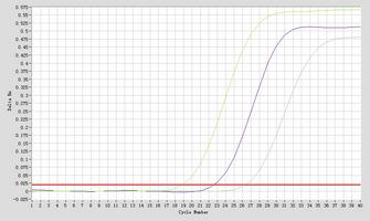 Amplication #2 hsa-mir-1271-5p Real-Time RT-PCR.