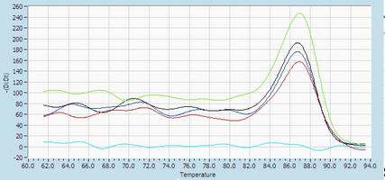 Dissociation Curve hsa-mir-92b RT-PCR.