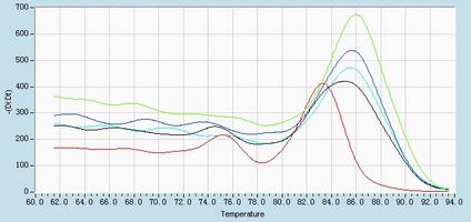 Dissociation Curve hsa-mir-320b RT-PCR.
