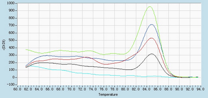 Dissociation Curve hsa-mir-7 Real-time RT-PCR.