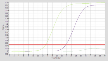 Amplication bta-mir-139 Real-Time RT-PCR.