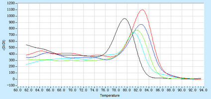 Dissociation Curve hsa-mir-299 RT-PCR.