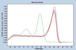 Dissociation Curve mmu-mir-342-3p.