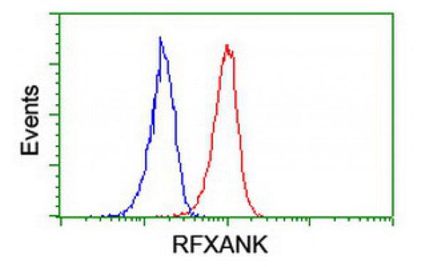 Flow Cytometry (FC/FACS) RFXANK.