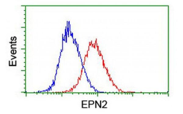Flow Cytometry (FC/FACS) EPN2.