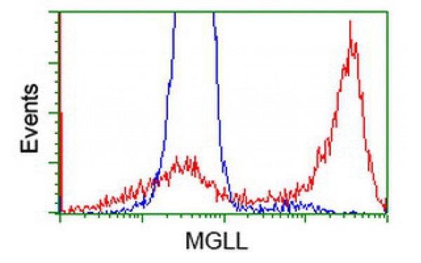 Flow Cytometry (FC/FACS) MGLL.