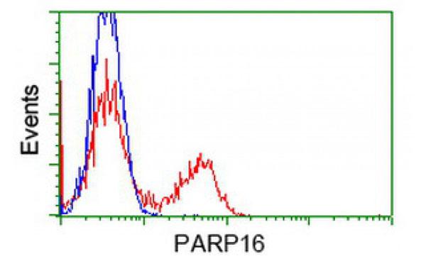 Flow Cytometry (FC/FACS) PARP16.