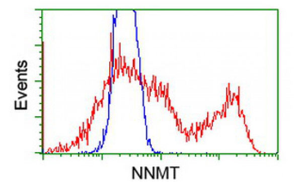 Flow Cytometry (FC/FACS) NNMT.