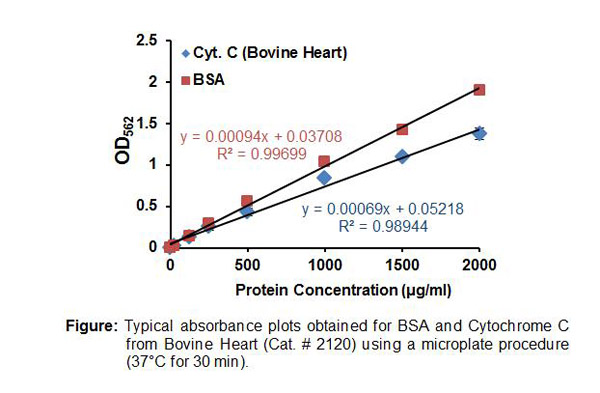 Typical Testing Data/Standard Curve (for reference only) BCA Protein Assay Kit II.