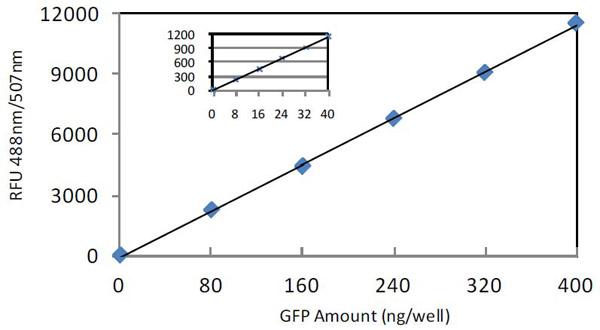 bca protein assay protocol pdf