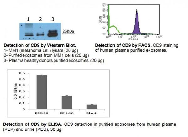 Testing Data CD9.