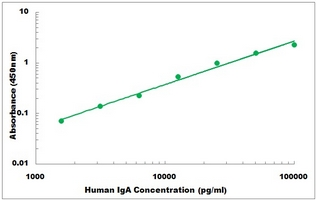 IgA elisa kit Typical Testing Data/Standard Curve (for reference only) image