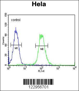 Flow Cytometry (FC/FACS) XRCC6.