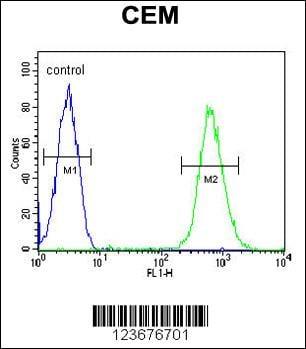 Flow Cytometry (FC/FACS) CD37.