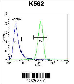 Flow Cytometry (FC/FACS) GAGE13.