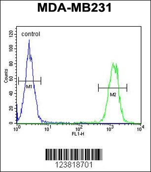 Flow Cytometry (FC/FACS) KIR2DL2.