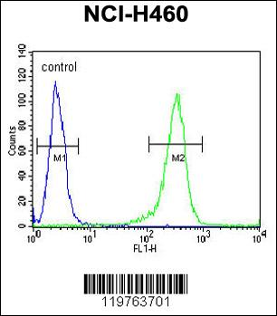 Flow Cytometry (FC/FACS) CD2BP2.